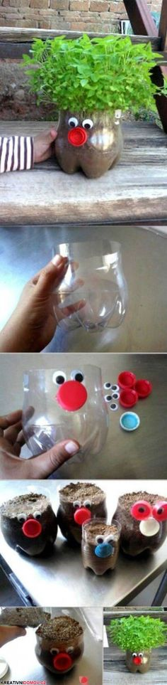 Kus plastové flašky jako vtipný květník :)