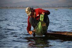 Young Fisherman at Inle Lake