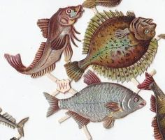 Victorian Scraps 'WH' Joined Fish Seahorse Silver Die Cuts 1880s (02/11/2012)