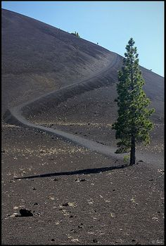 Trail leading to the top of Cinder Cone, Lassen Volcanic National Park, California; photo by .rickz