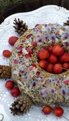 Bird Seed Cake - Looks yummy enough for us! Great Holiday ideas: http://www.the-scoop-on-wild-birds-and-feeders.com/seedfeeders.html