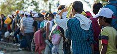 Asylum seekers wait at the Macedonia border near the village of Idomeni, Greece, 2015