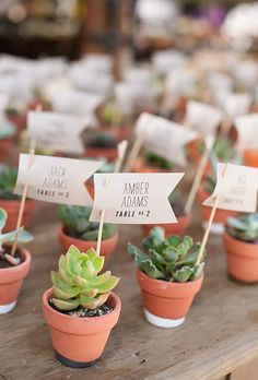 Brides.com: . Mini potted succulents become the perfect escort card with the addition of a mini paper flag.
