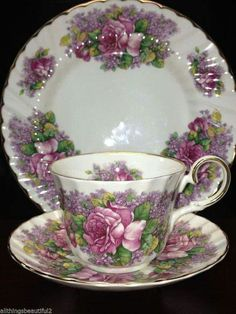Allyn Nelson Bone China Tea Cup & Saucer England Purple Silver Rose V…