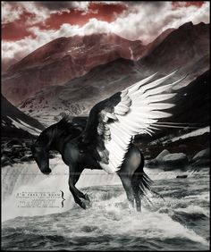 i'm free to roam.. by devils-horizon on deviantART