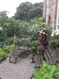 Calm oasis Outdoor Chairs, Outdoor Furniture, Outdoor Decor, Vertical Gardens, Garden Paths, Oasis, Outdoor Gardens, Outdoor Living, Calm