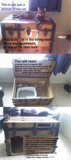 LPT: for cat people with small apartments, turn almost any used furniture into a stylish kitty outhouse - Imgur/Reddit #cattoilethidden