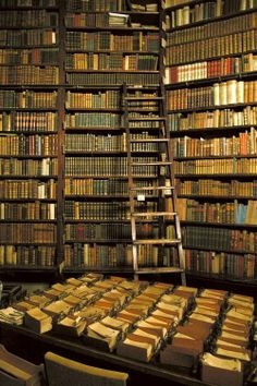 This is what heaven looks like.  Bibliothek in Budapest // Rare and Ancient Book Library, Budapest, Hungary