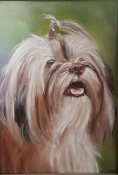 'Luna', portrait of a Havanese. Painted by Anne-Fieke Later