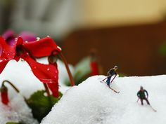 A Winter Day | Flickr - Photo Sharing!