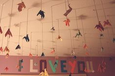 1000 paper cranes =] In honor of Sam from #Shiver by Maggie Stiefvater