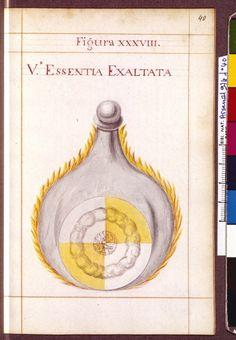 Figura XXXVIII - V. Essentia Exaltata - Sapientia veterum philosophorum, sive doctrina eorumdem de summa et universali medicina 40 hierogliphis explicata