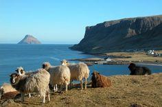 Zaujímavosti zo sveta - Fotoalbum - Krásy sveta - Faerské ostrovy