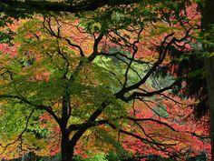 Autumn breaks UK (© Getty Images)