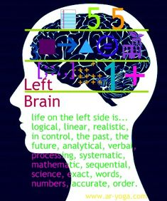the left brain and its function...
