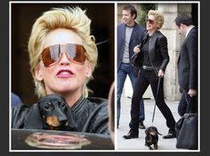 Sharon Stone and her Dachshund in the street of New York city