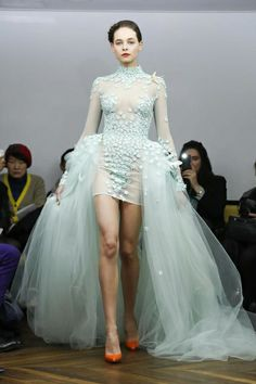 Tony Yaacoub Haute Couture Spring 2014