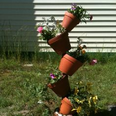Our tipsy pots right after putting the flowers