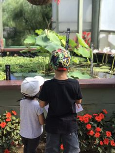 Blue Lotus Gardens – Yarra Junction | The Urban Ma