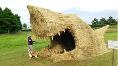 this is just fun. Large scale rice straw sculpture from Japan's straw art festival. Kagawa, Niigata, Straw Sculpture, Straw Art, Animal Sculptures, Art Festival, Amazing Art, Cool Pictures, Crazy Photos