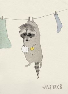 30 AMUSING DUTCH WORDS// Wasbeer, courtesy of Laura Frame Illustration