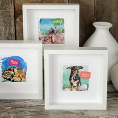 Create a 3D DIY pet portrait for a fun kid's craft perfect for pet lovers! Print our colorful backgrounds and layer the photos for an easy DIY