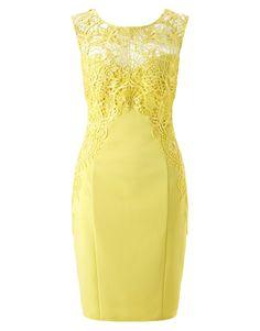 Lipsy Lace Applique Bodycon Dress