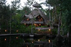 Amazon Sacha Lodge - this is a gorgeous resort located in the middle of a 5,000 acre national preserve in the Amazon jungles of Ecuador.