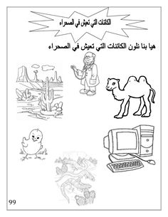 بوكلت اللغة العربية بالتدريبات لثانية حضانة Arabic booklet kg2 first … Transportation Preschool Activities, Preschool Prep, Arabic Alphabet Letters, Arabic Alphabet For Kids, Alphabet Tracing Worksheets, Alphabet Activities, Learning To Write, Learning Arabic, Arabic Handwriting