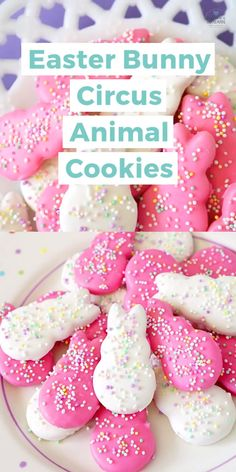These DIY homemade Easter Bunny Circus Animal Cookies put a cute holiday spin on a classic favorite! Makes a great Easter dessert idea or fun classroom treat for the kiddos! gifts for classroom Easter Bunny Circus Animal Cookies Easter Deserts, Easy Easter Desserts, Easter Snacks, Easter Appetizers, Easter Candy, Easter Treats, Easter Recipes, Holiday Desserts, Holiday Treats