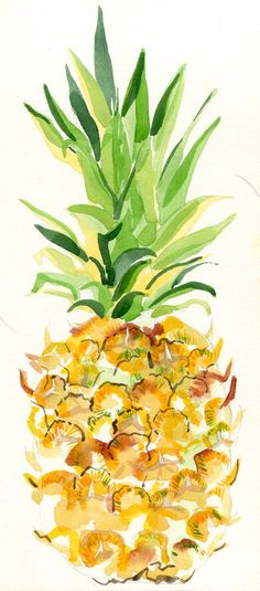 FRAMED ORIGINAL Watercolour Pineapple Painting by HannahLClark