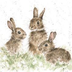 Wrendale Designs Country Set Greeting Card NEW Rabbits Born free Rabbit Drawing, Rabbit Art, Rabbit Crafts, Animal Paintings, Animal Drawings, Art Drawings, Bunny Art, Cute Bunny, Watercolor Animals