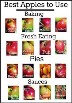 """Another Pinner wrote: """"An easy guide to the best apples to use in cooking & baking. I disagree with the Honeycrisp only under Pies though - it is the BEST one for fresh eating Do It Yourself Food, Think Food, Granny Smith, Food Facts, Fruit Facts, Baking Tips, Baking Secrets, Apple Recipes, Fruits And Veggies"""