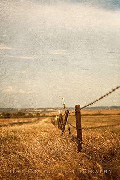 490 Best Old Fences Images In 2018 Nature Old Fences