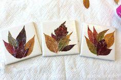 Leaf Coasters - 15 Fabulous Fall Leaf Crafts for Kids
