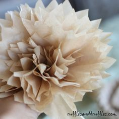 DIY coffee filter peonies. You can also use cupcake liners :)