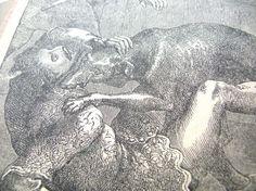 Antique Illustration - Antique Print - Dog Attack Illustration - Black and White Print - Antique Ephemera - Vintage Ephemera - Victorian by BohemianGypsyCaravan