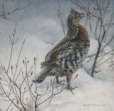 Robert Bateman Ruffed Grouse in Snow