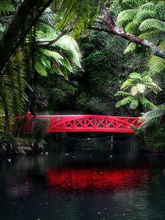 The red bridge Pukekura Park, New Plymouth, North Island, New Zealand The Beautiful Country, Beautiful Places, Places To Travel, Places To See, Travel Destinations, Love Bridge, New Zealand Houses, New Zealand Travel, South Island