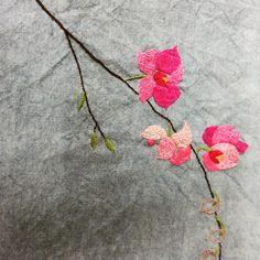 #바늘그림 #들꽃 #야생화 #작가 #꽃#봄