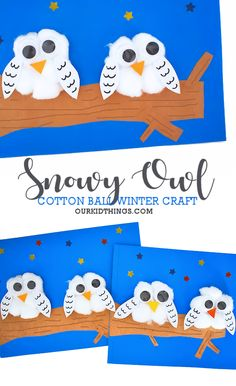 You'll love how the cotton balls make our Cotton Ball Snowy Owl Craft poofy, fluffy, and quite whimsical! It's an adorable winter craft. Winter Crafts For Toddlers, Animal Crafts For Kids, Toddler Crafts, Owl Crafts Preschool, Kindergarten Crafts, Kids Crafts, Cotton Ball Crafts, Owl Kids, January Crafts