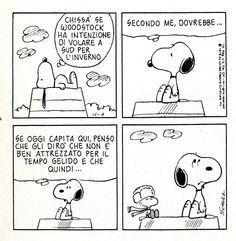 Woodstock in the South - Peanuts Peanuts Cartoon, Peanuts Snoopy, Peanuts Comics, Brown Co, Snoopy Comics, Snoopy And Woodstock, Smile Quotes, Vignettes, Charlie Brown