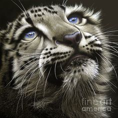Shop for leopard art from the world's greatest living artists. All leopard artwork ships within 48 hours and includes a money-back guarantee. Choose your favorite leopard designs and purchase them as wall art, home decor, phone cases, tote bags, and more! Leopard Cub, Snow Leopard, Beautiful Cats, Animals Beautiful, Gorgeous Eyes, Chat Lion, Regard Animal, Animals And Pets, Cute Animals