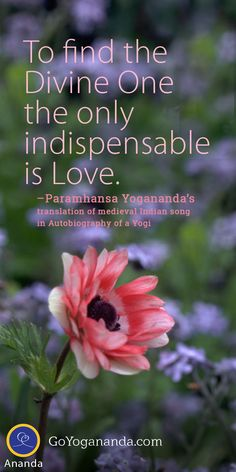 Inspiring quote from Paramhansa Yogananda's Autobiography of a Yogi. Truth Quotes, Life Quotes, Autobiography Of A Yogi, Yoga Master, Spiritual Transformation, States Of Consciousness, Self Realization, Finding God, Spiritual Teachers