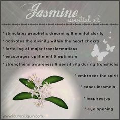 Jasmine *essential oil* ~ Healing Properties and Uses