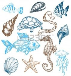 http://us.123rf.com/400wm/400/400/torky/torky1103/torky110300032/9056352-marine-life-drawing.jpg