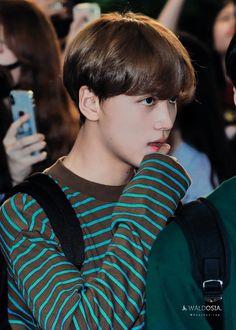 """Hyuck going all chuuu and pouty : a very necessary thread. Taeyong, Jaehyun, Nct 127, Johnny Seo, Jung Woo, Na Jaemin, Fandom, Ji Sung, Megalodon"