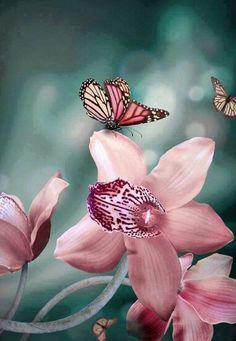 Roze orchidee met een vlinder in kleur