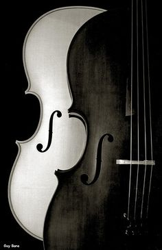 Color Negro y Blanco - Black & White!!! Violin