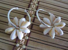 Hawaiian cowery shell earrings, island chic.